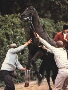 Dr Gillman and Frank Calvarese working on Ruffian with outrider Jim Daly in background