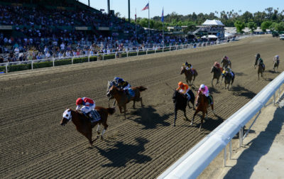 Horse Race Front View
