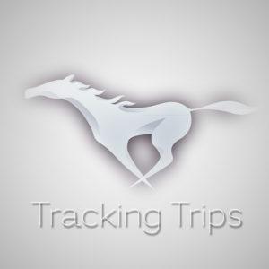 Tracking Trips Square Logo