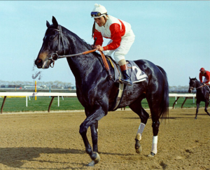 Ruffian and Jacinto Vasquez