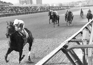 Ruffian dominating as usual