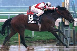 Woody's last Belmont winner, Danzig Connection