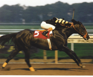 Angel Cordero Jr. aboard Seattle Slew
