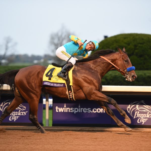 Horse & Jockey racing towards finish line