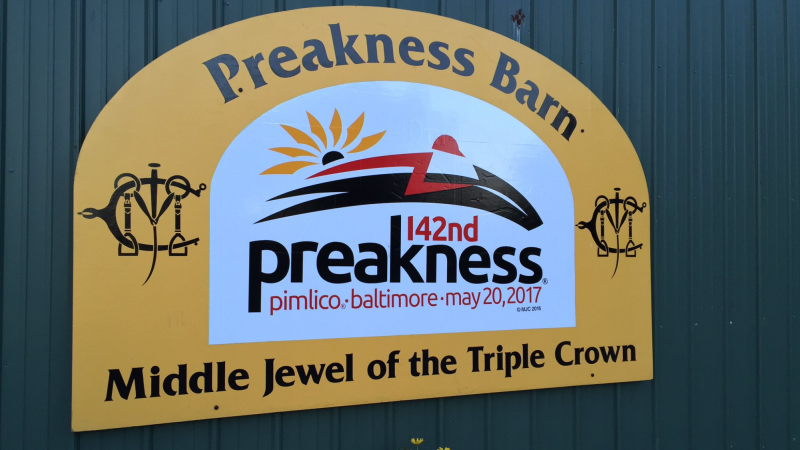 Preakness Review by Jonathan Stettin - Past The Wire